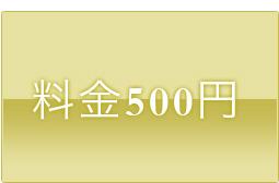 料金500円